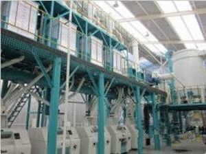 Wheat Flour Mill with 50T/D capacity