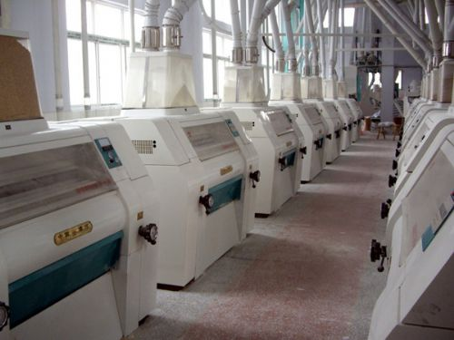 Small wheat flour mill machine with High productivity