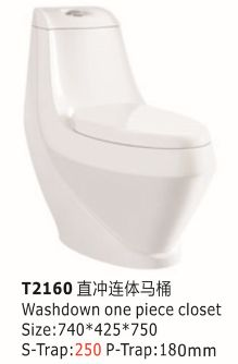 T2160 washdown one piece toilet