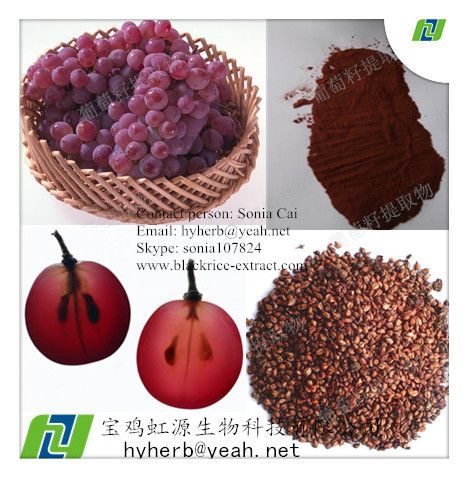 Factory Supply Natural Grape Seed Extract