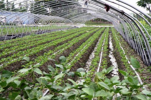 鸿润节水灌溉材料喷灌