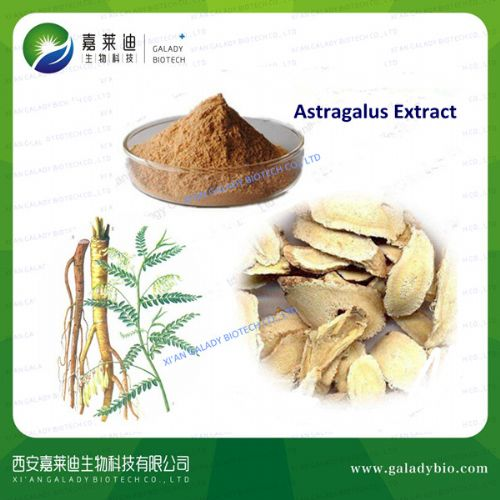 Astragalus Extract, Astragalus P.E.
