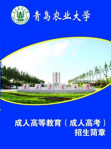 报名电话-城阳青岛农业大学成人高考专升本报名-青岛智禾职业培训学校