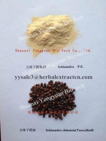 Schisandra Extract, Schisandrins2%,5%,9%