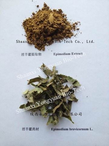 Epimedium Breviconum P.E.,Icariin 10%-98%