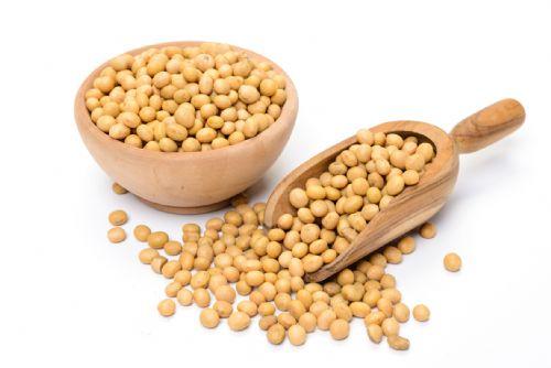 Soybean Extract Isoflavones