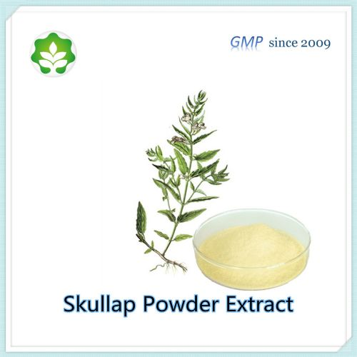 radix scutellariae powder extract  for pharmaceutical use