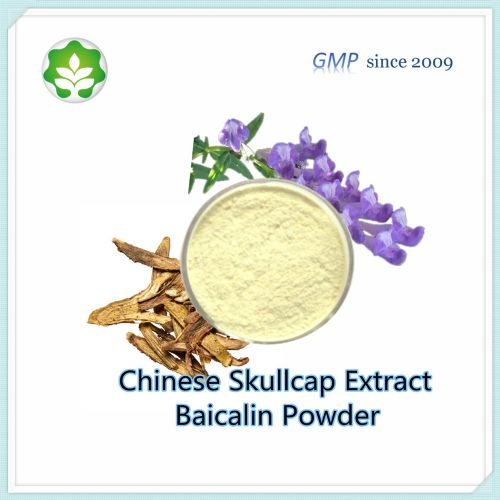 botanic balcal scutellaria baicalensis extract