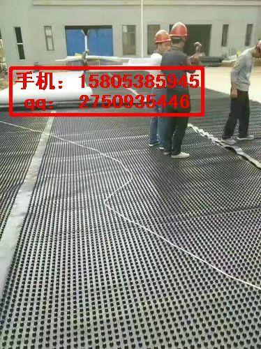 桂林车库顶板排水板&塑料滤水板15805385945