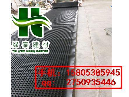 珠海车库底板排水板丨韶关2公分排水板15805385945