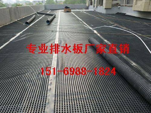 8mm菏泽车库绿化顶板排水板\价格