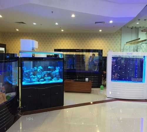 珠海水族鱼缸供应商/可丽爱鱼缸供应商/珠海市香洲龙鱼