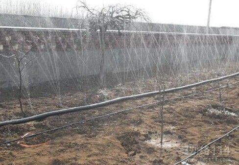 喷灌带批发-优质过滤施肥器公司-莱芜嬴润节水灌溉设备