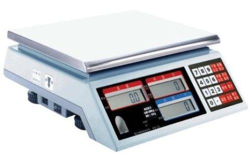 电子秤生产厂家-山东电子吊秤厂家-泰州市东华称重设备