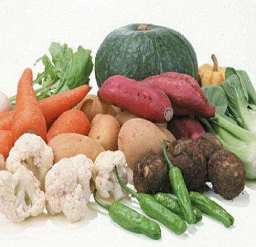 畅销的农副产品交易平台 蔬菜种植方案 云南盛衍种业有
