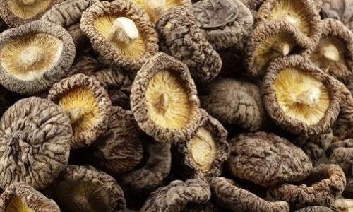 江津香菇多少一斤