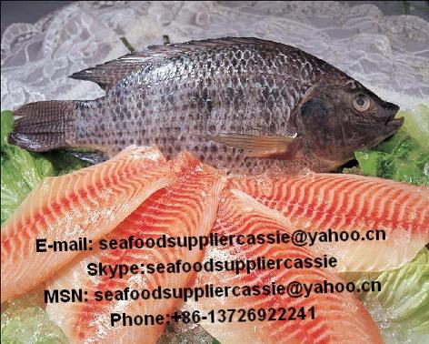 05罗非鱼五去 价格:860元/吨