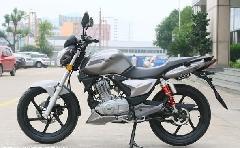 钱江御龙125摩托车 价格:1400元/辆