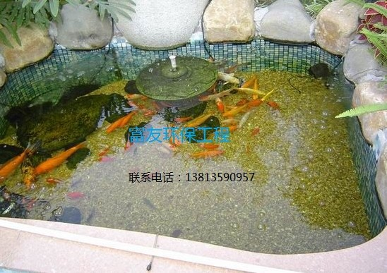 流水养鱼池设计图 农村庭院鱼池设计图 小院鱼池设计图 庭院鱼池过滤