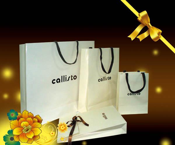 包装 包装设计 购物纸袋 纸袋 600_497